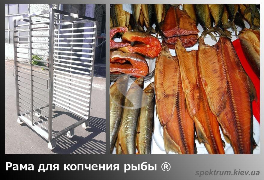 Ramy-dlja-kopchenija-ryby